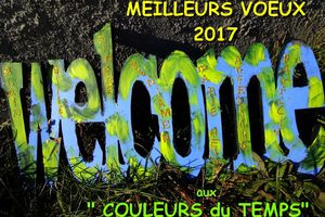 """ANNÉE """"WELCOME"""" 2017!"""