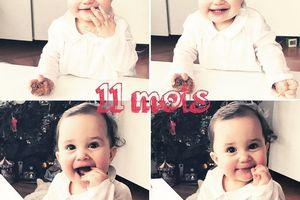 Le 12eme mois d'Iris