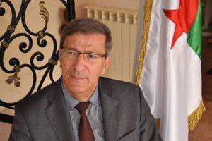 Ali Benouari: « I warned against the risk of Algeria collapse »