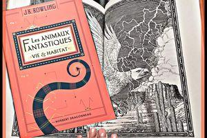Les animaux fantastiques – vie et habitat