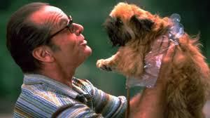 Ce joli p'tit chien....