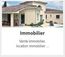 Immobilier : les annonces accessibles via l'application Android Paruvendu