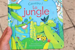 Coucou ! La Jungle