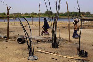 Une vision tronquée de la crise humanitaire autour du lac Tchad