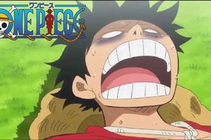 ONE PIECE EPISODE 784 VOSTFR HD