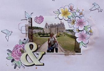 Page Château de Langeais