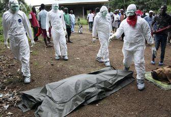 Ebola : enfin un vaccin efficace ?