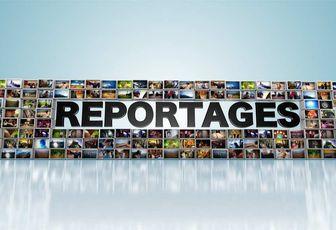 Audiences Tv du 13/11/16 en journée: L'info de TF1 forte. Record de l'année pour Grands Reportages. Les municipaux démarrent bien sur C8.