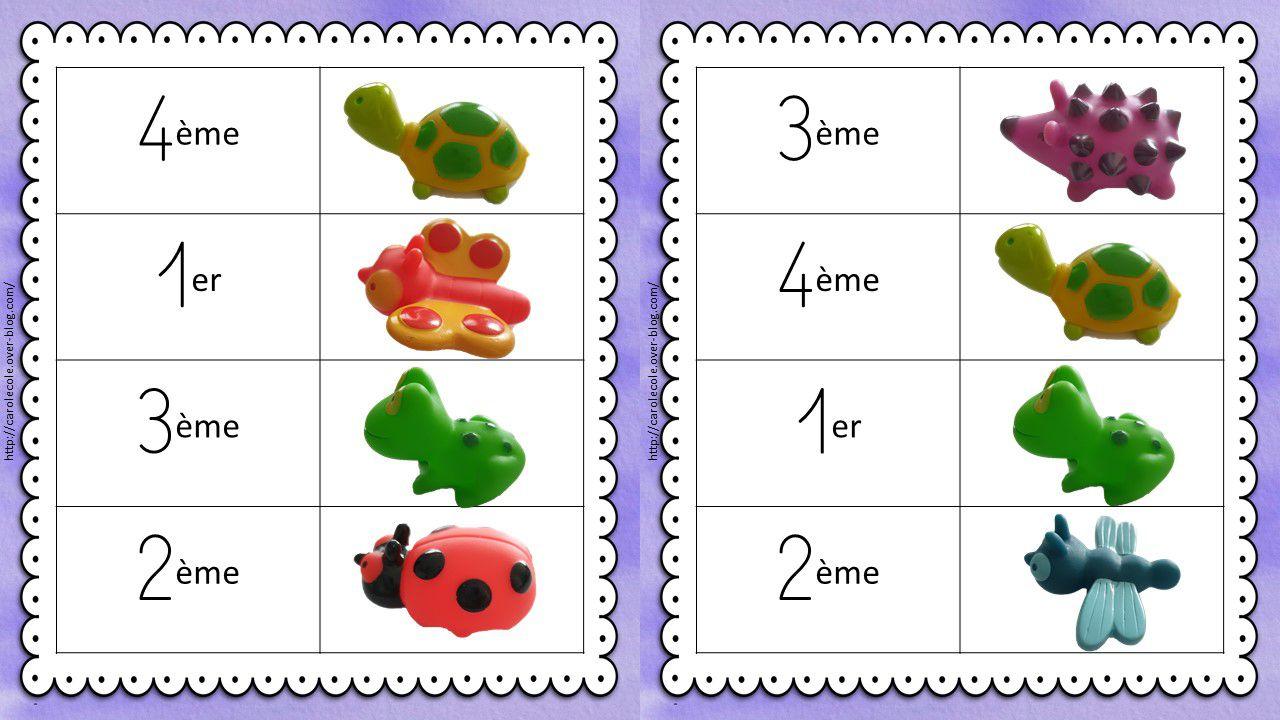 Ordonner les animaux en suivant un modèle ou des cartes indications.
