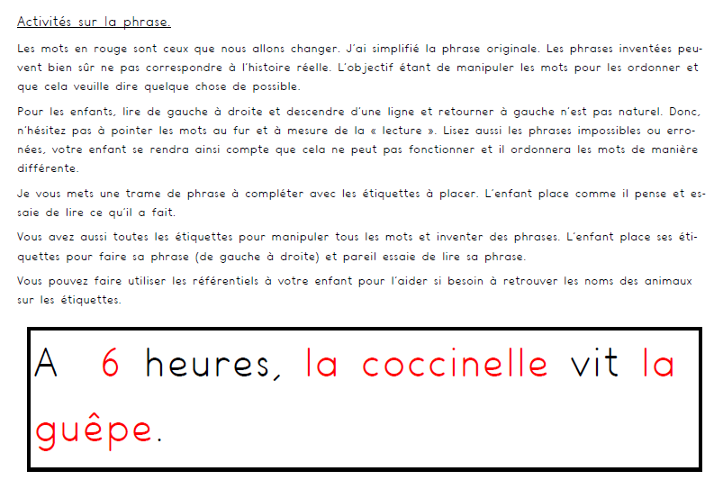 """Activités sur la phrase (album """"la coccinelle mal lunée"""" suite)"""
