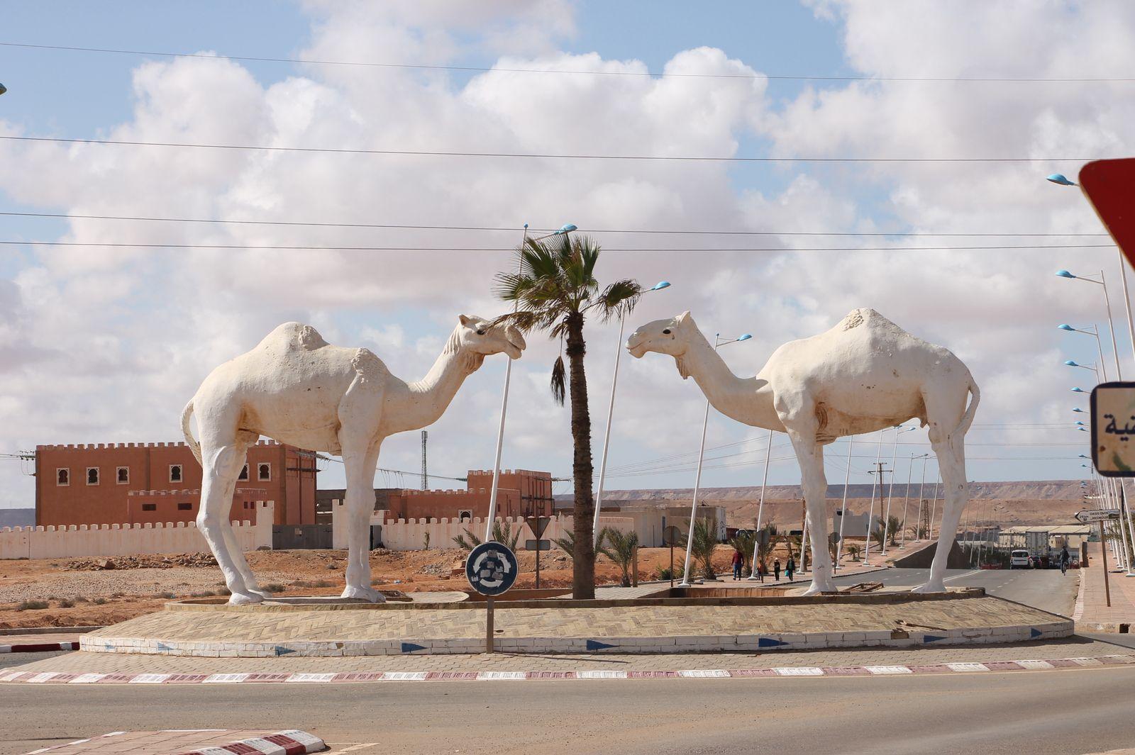 Ce sont deux dromadaires blancs, gigantesques, qui accueillent le visiteur à l'entrée de la ville