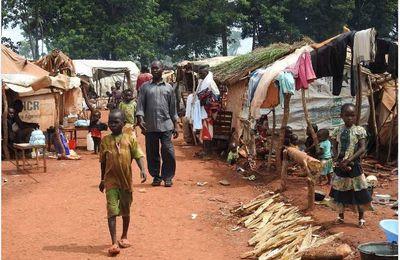 Centrafrique: l'ONU implore l'aide de la Suisse