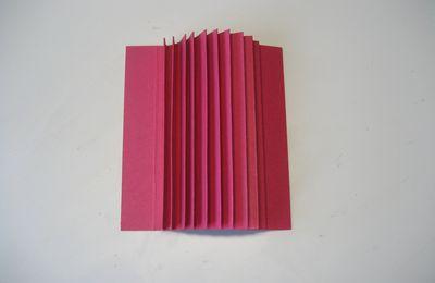 MINI-ALBUMS DE 15,5 SUR 10,6 cm