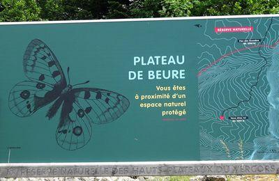 COL DU ROUSSET PLATEAU DE BEURE 27 06 2017