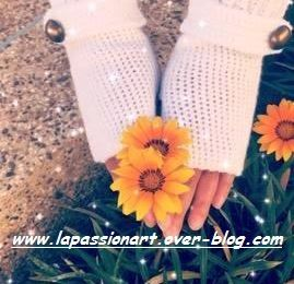 mitaines crochet (crochet fingerless gloves ):