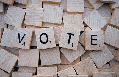Votes blancs, nuls & abstention : Un(e) franc-maçon(ne) n'est pas un(e) citoyen(ne) stupide.