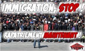 """« IL FAUT QUE LA PÉTITION """"EUROPE - STOP INVASION"""""""