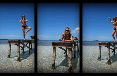 Sur la plage abandonnée, coquillages et crustacés ...