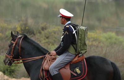 Le Salon du cheval 2017, l'occasion pour mettre en avant le rôle central du cheval et du cavalier-Gendarme