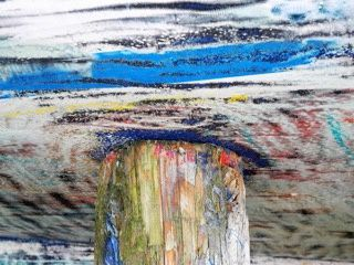 L'instinct et la couleur par Cathy Bion
