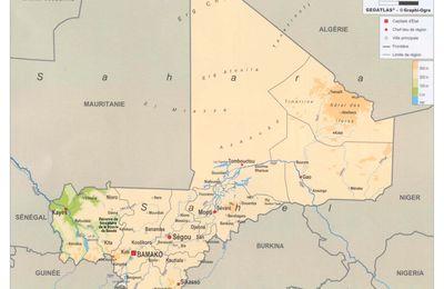 Quand l'État malien offre son peuple aux intérêts impérialistes (Reseau International)