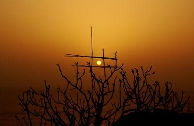 1144 - Le soleil n'est jamais si beau que le jour où......