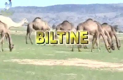 Le Préfet  de Biltine, pris la main dans le sac