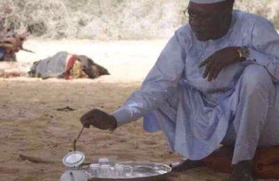 Le président tchadien, un véritable buveur du thé