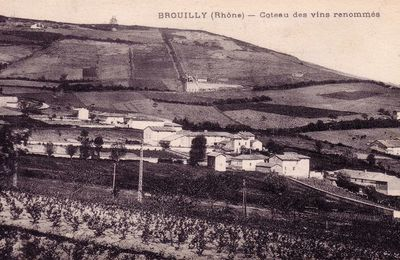 (Photo) Brouilly en images