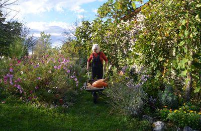 Domaine Les Cyprès - L'automne !