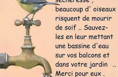 Soyons responsables...