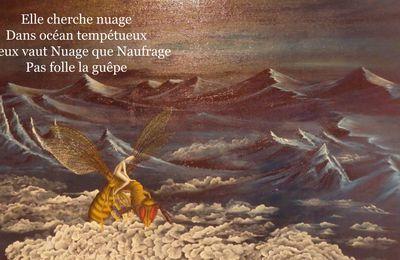 Imagecitation N° 28