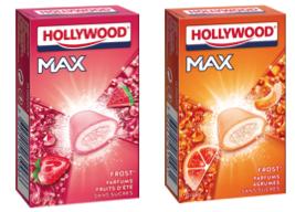 ☆ Tu veux entrer dans la réalité virtuelle avec Hollywood Max ? ☆ {Give Away Inside}
