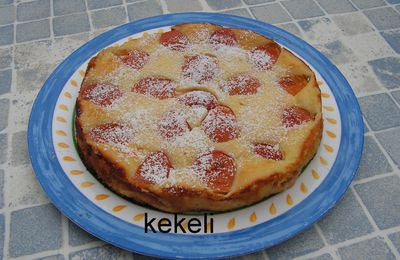 Gâteau léger au fromage blanc et abricots