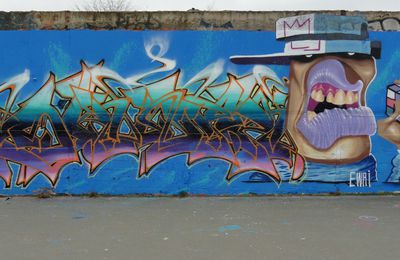 Street Art : Graffitis & Fresques Murales 94400 Vitry sur seine