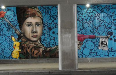 Street Art : Graffitis & Fresques Murale 31500 Toulouse
