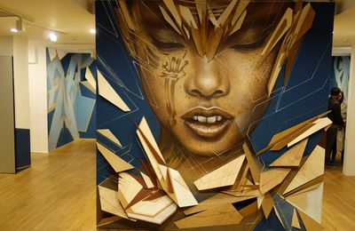Street Art : Graffitis & Fresques Murales 75007 Paris
