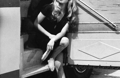 """""""Elle m'appelle sa fille"""" : Pamela Anderson se confie sur sa relation avec... Brigitte Bardot !"""
