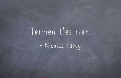 Fulguration - Nicolas Tardy