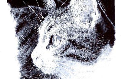 Mowgli A4 stylo-bille