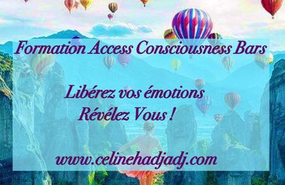 Formation Access Consciousness Bars le 17 Juin