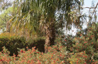 jardin de la digue d'Orry