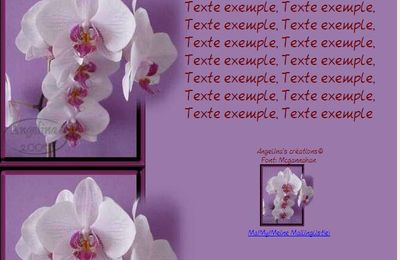 Phalaenopsis Orchidée Incredimail & Papier A4 h l & outlook & enveloppe & 2 cartes A5 & signets 3 langues      436e597d525f0_sdc