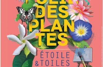 Etoiles et Toiles à Nantes