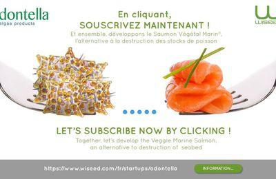 Superbe Startup Française ODONTELLA: Saumon et Thon issus de Microalgues Marines !