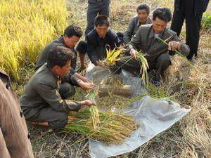 Après une accélération de sa croissance économique en 2016, la Corée du Nord confrontée aux sanctions et à la pire sécheresse depuis 2001