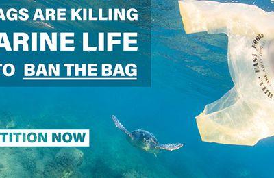 Das Verbot von Plastiktüten
