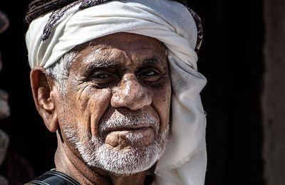 Les processus révolutionnaires arabes
