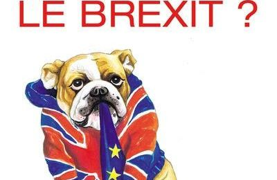 Stephen Clarke - God save the Brexit (Avis)