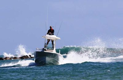 Boston Whaler 240 Dauntless Pro – La tour qui fait tout !